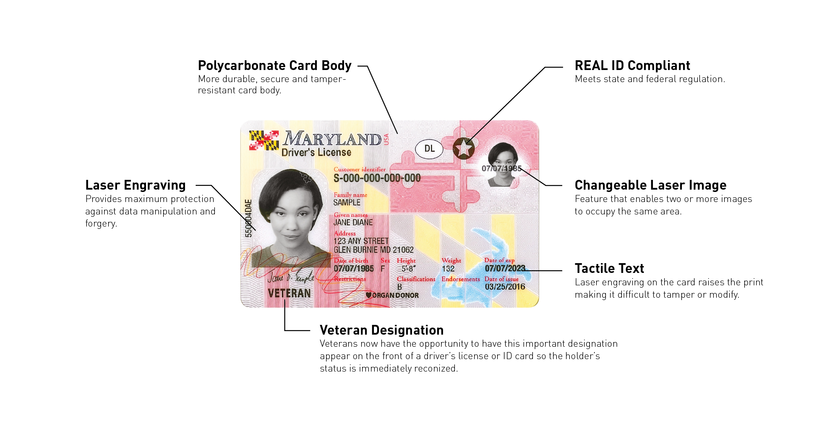 maryland drivers license permit age