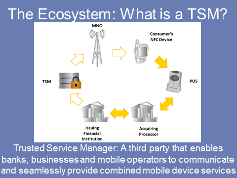 The Ecosystem: What is a TSM?